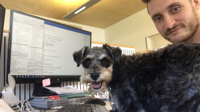 Bring Your Dog To Work Day 2019 Competition Time!!!