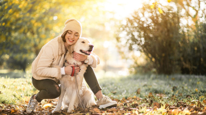Benefits Of Pet Sharing To You And Your Pets